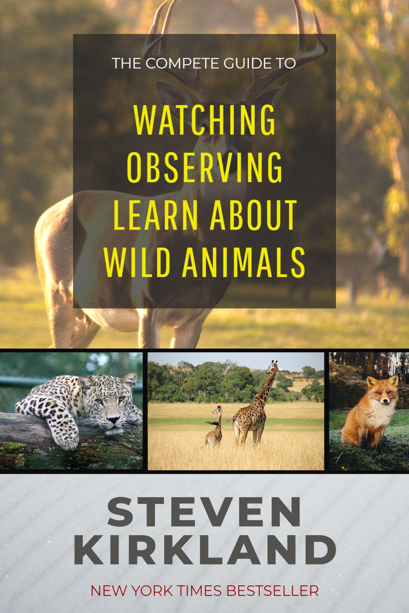 Wild Animals Book Cover Maker