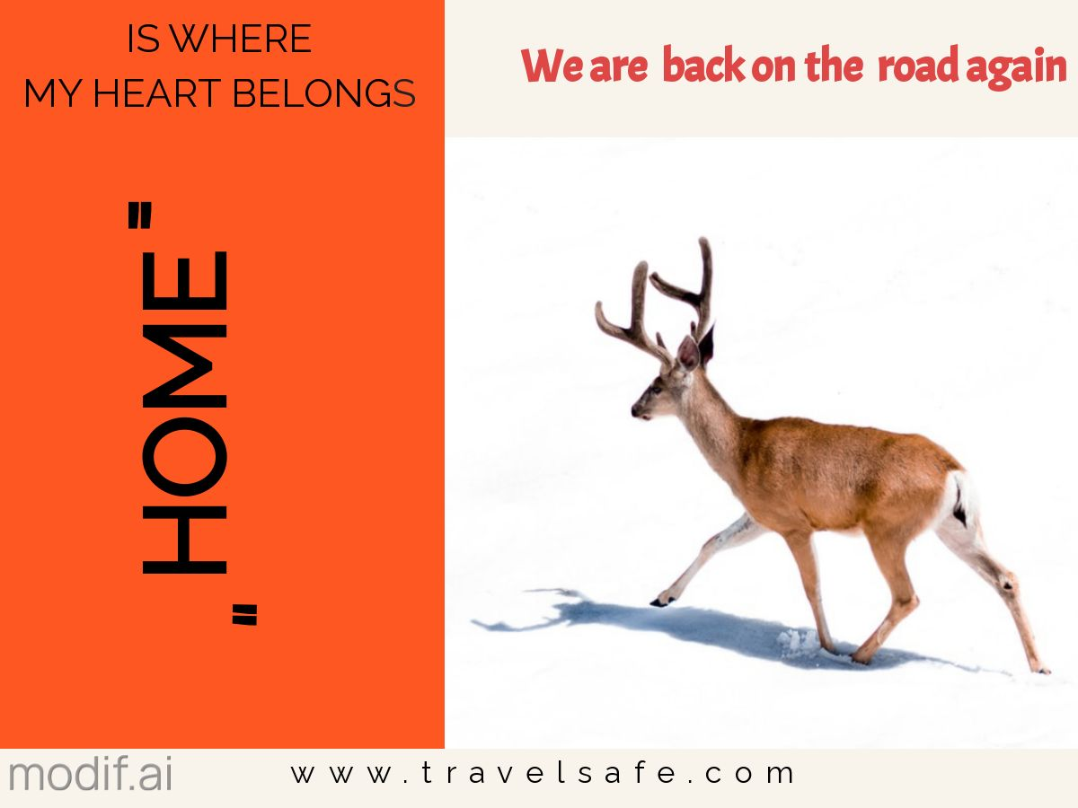 Holiday Travel Safety Card Template