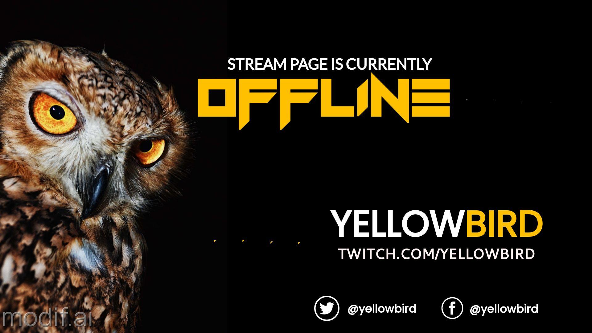 Bird Twitch Offline Banner Design