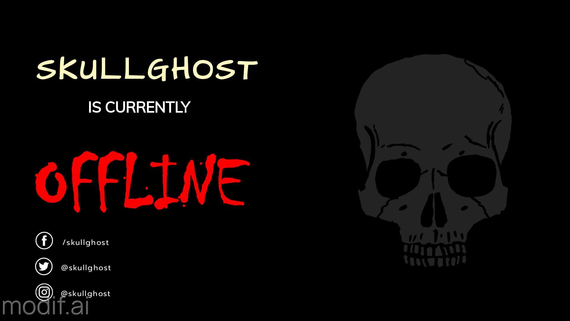 Skull Twitch Offline Banner