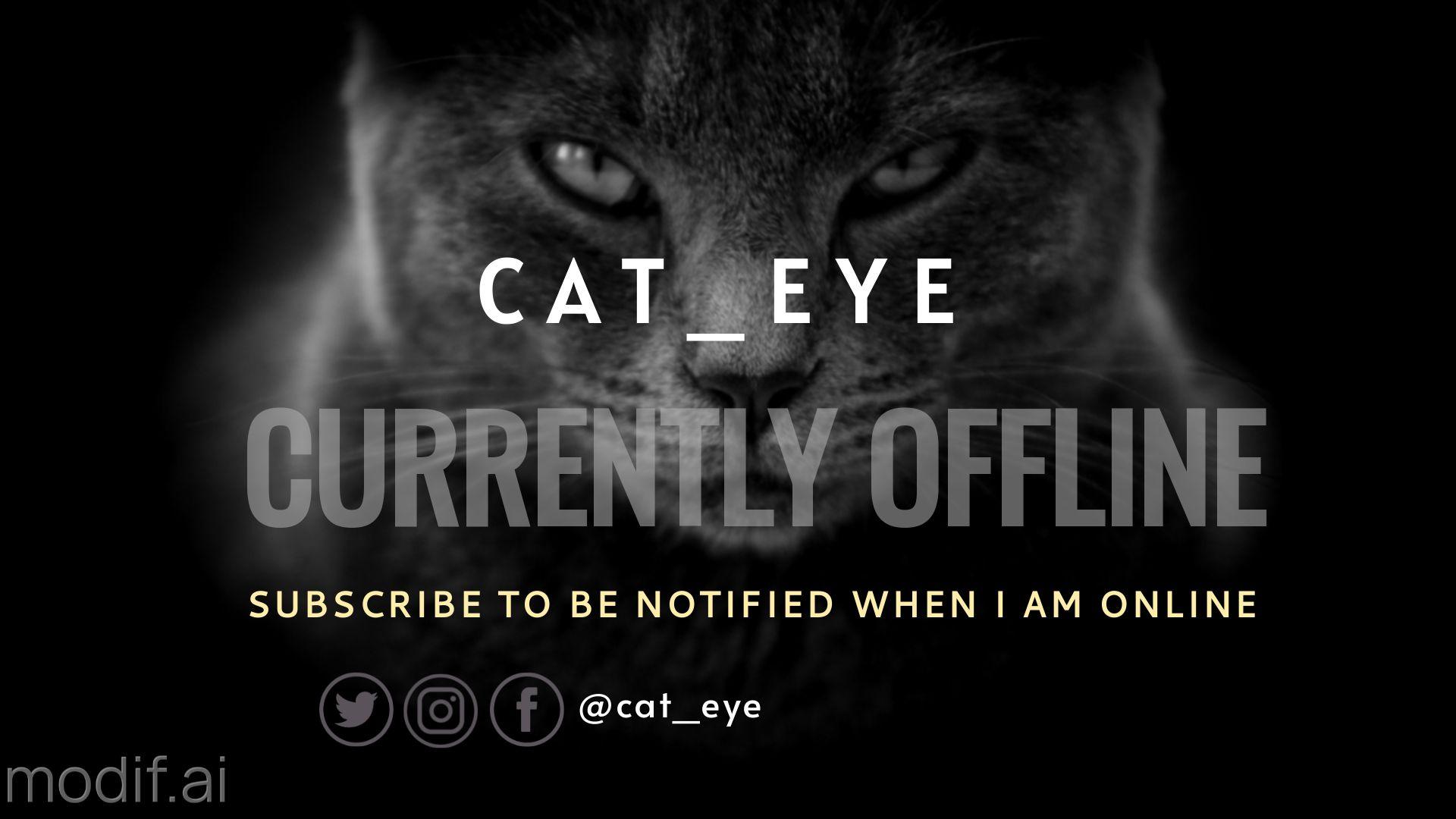 Dark Cat Twitch Offline Banner
