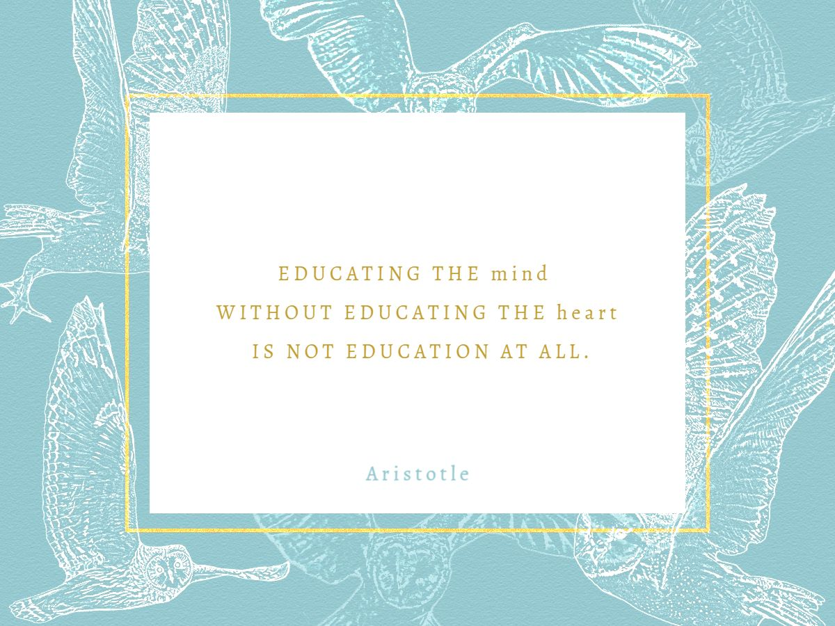 Owls and Education Quote Facebook Post