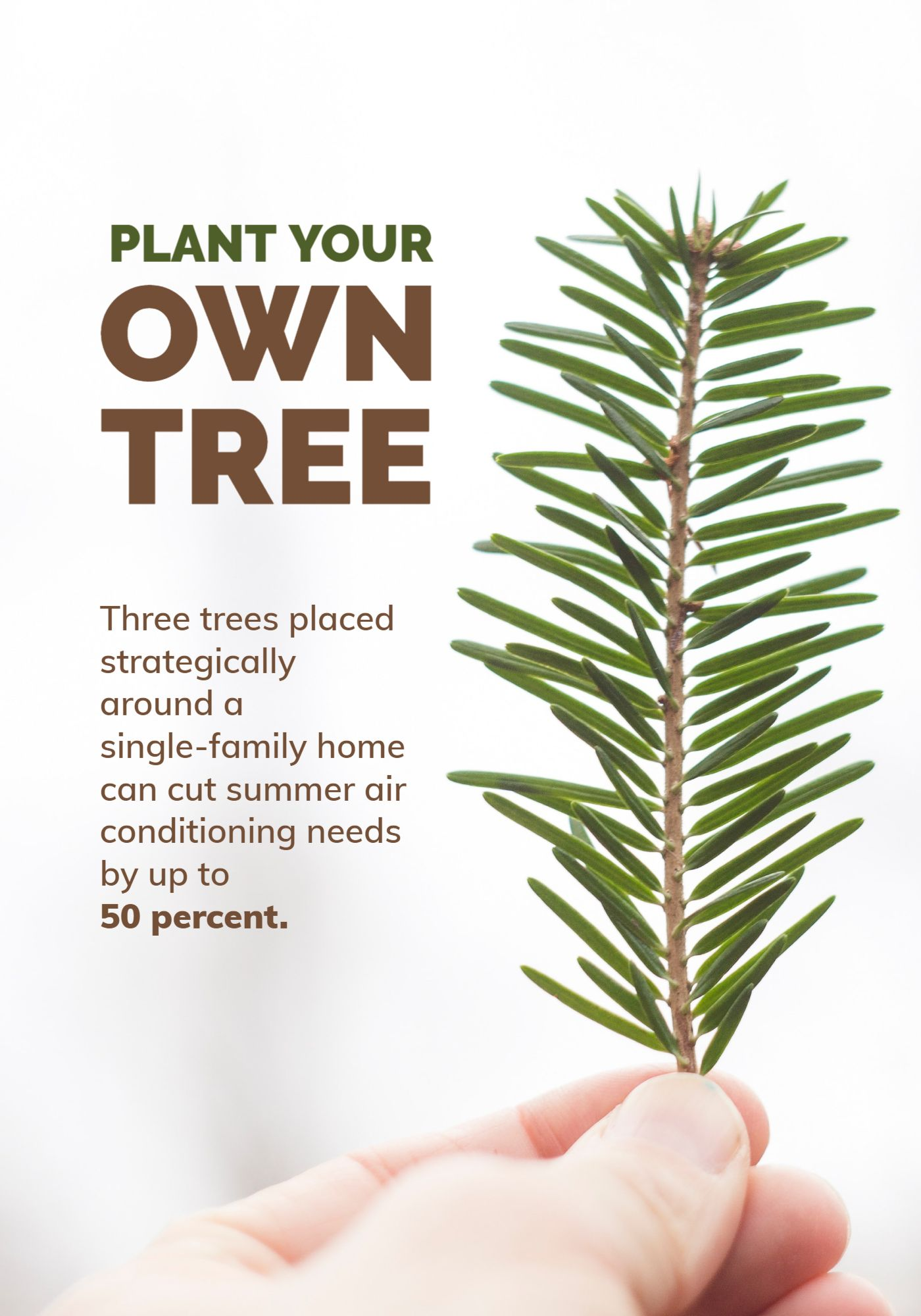Tree Planting Poster Template